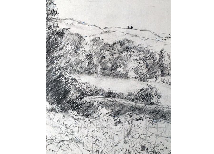Landscapes #4 | $100