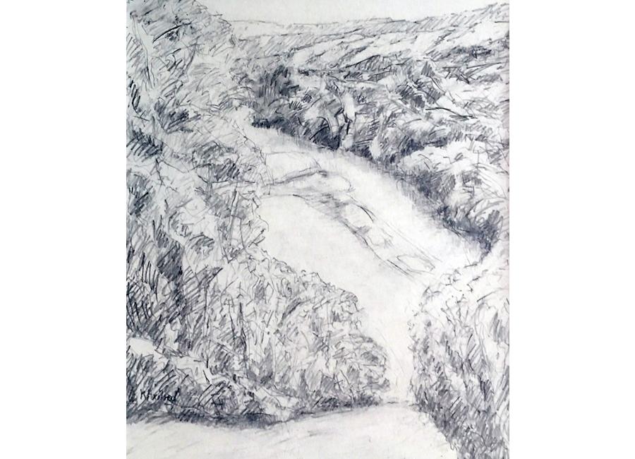 Landscapes #7 | $100